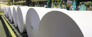 Roll of paper in a paper factory